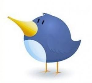 TwitterBird_2